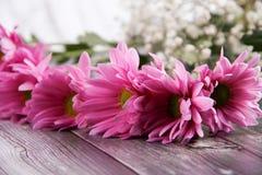 Día de San Valentín púrpuras del espacio de las flores Imagen de archivo