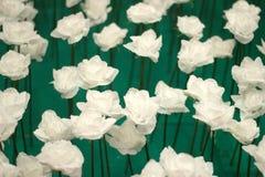 Día de tarjetas del día de San Valentín de Rose Fotos de archivo libres de regalías