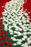 Día de tarjetas del día de San Valentín de Rose Imagenes de archivo