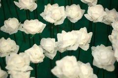 Día de tarjetas del día de San Valentín de Rose Foto de archivo