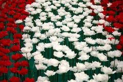 Día de tarjetas del día de San Valentín de Rose Imagen de archivo