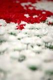 Día de tarjetas del día de San Valentín de Rose Imagen de archivo libre de regalías
