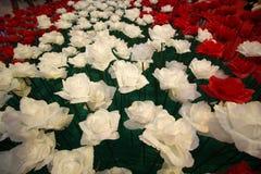 Día de tarjetas del día de San Valentín de Rose Fotografía de archivo