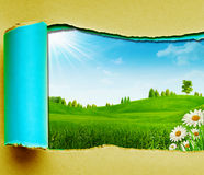 Día de verano de la belleza en las colinas verdes Imagenes de archivo