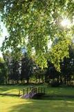 Día de verano en el cementerio Imágenes de archivo libres de regalías