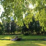 Día de verano en el cementerio Foto de archivo