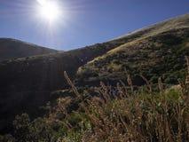 Día de verano en las montañas imagen de archivo libre de regalías