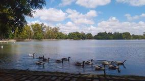 Día de verano en los lagos de Palermo, Buenos Aires - la Argentina Imagen de archivo