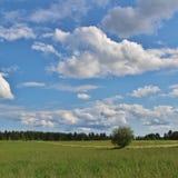 Día de verano en Norrbotten Imágenes de archivo libres de regalías