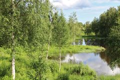 Día de verano en Norrbotten Fotos de archivo libres de regalías