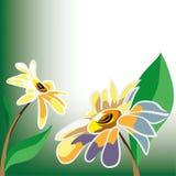 Día de verano hermoso con las flores Imágenes de archivo libres de regalías