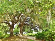 Día de verano meridional en Charleston Foto de archivo libre de regalías