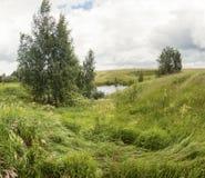 Día de verano nublado del prado verde Foto de archivo libre de regalías