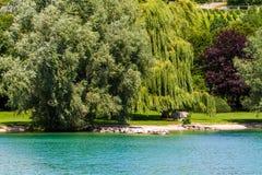 Día de verano por un lago Imágenes de archivo libres de regalías