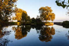 Día de verano por un lago Imagen de archivo