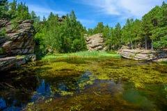 Día de verano, un pequeño lago del bosque Foto de archivo libre de regalías
