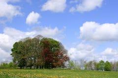 Día del cielo azul Foto de archivo libre de regalías