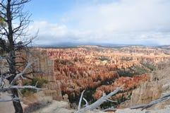 Día del frío de Bryce Canyon Snow Imagen de archivo libre de regalías