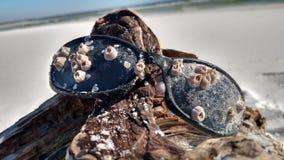 Día del océano Imágenes de archivo libres de regalías