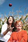 Día del otoño Fotos de archivo libres de regalías