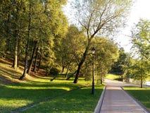 Día del otoño en el parque Fotografía de archivo