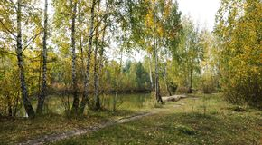 Día del otoño en la orilla del lago Fotografía de archivo libre de regalías