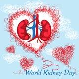 Día del riñón del mundo Imagenes de archivo