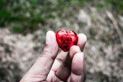 Día del ` s de Art Valentine de la foto Foto de archivo