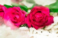 Día del `s de la tarjeta del día de San Valentín Fotografía de archivo