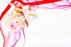 Día del ` s de Valetine, día del ` s de la madre, concepto del cumpleaños - cinta colorida Imagen de archivo libre de regalías