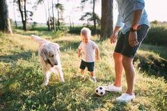 Día del `s del padre Padre feliz de la familia e hijo del niño que juega y que ríe en la naturaleza fotografía de archivo libre de regalías