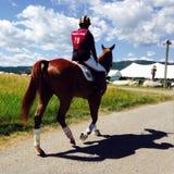 Día en las carreras de caballos Imagenes de archivo