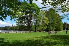 Día en un parque en día del comienzo del verano Imagenes de archivo