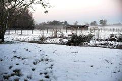 Día extraño de la nieve para Luisiana del sur fotos de archivo libres de regalías