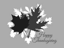 Día feliz de la acción de gracias Autumn Leaves Rebecca 36 Fotos de archivo