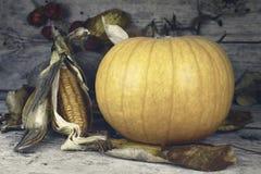 Día feliz de la acción de gracias, decoración en una tabla de madera con Pumpki Foto de archivo libre de regalías