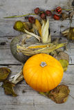 Día feliz de la acción de gracias, decoración en una tabla de madera con Pumpki Foto de archivo