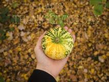 Día feliz de la acción de gracias Fotos de archivo libres de regalías