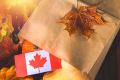 Día feliz de la acción de gracias en Canadá Hojas de las verduras, de las calabazas, de la calabaza, de las manzanas, del arce y  Foto de archivo