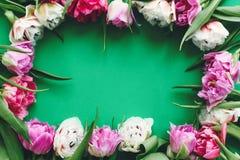 Día feliz del `s de la madre Los tulipanes dobles hermosos de la peonía enmarcan endecha del plano en el Libro Verde, espacio par imágenes de archivo libres de regalías