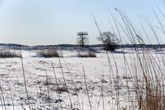 Día frío Parker River National Wildlife Refuge Fotografía de archivo