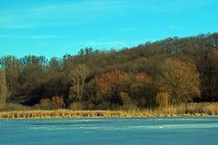 Día frío soleado, río y bosque Imagenes de archivo