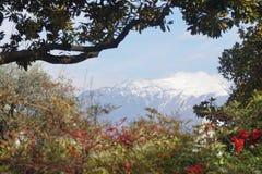 Día hermoso en Italia Fotografía de archivo libre de regalías