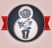 Día icons3 de las mujeres s Imagen de archivo