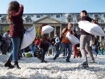 Día internacional Bucarest 2016 de la lucha de almohada Imagen de archivo libre de regalías