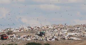 Día laborable en descarga de la ciudad con los trabajadores y camiones de basura y colinas inútiles enormes almacen de video