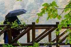 Día lluvioso del otoño imagen de archivo libre de regalías