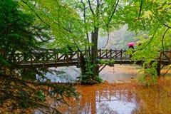 Día lluvioso del otoño fotos de archivo