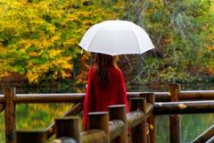 Día lluvioso del otoño fotografía de archivo libre de regalías