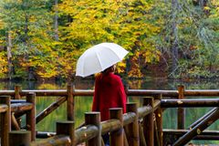 Día lluvioso del otoño fotos de archivo libres de regalías